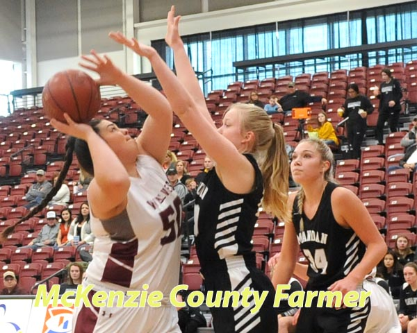 Wolves fall to Mandan, Minot in girls cage play