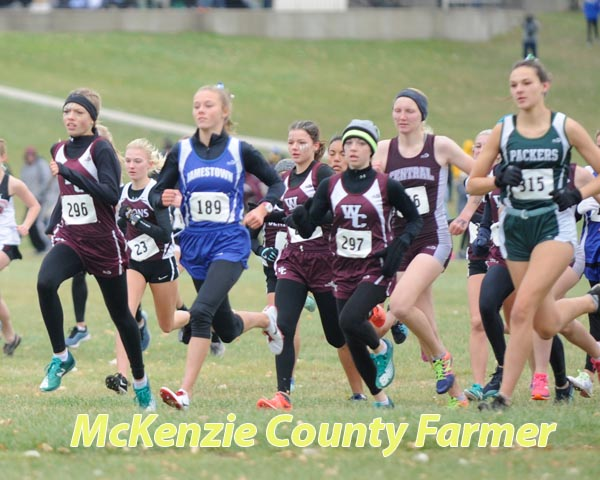 Ogle girls lead Wolves to 7th place finish at State